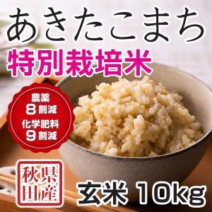 30年産新米 秋田県産 あきたこまち 特別栽培米 玄米 10kg  慣行栽培比 農薬8割減、化学肥料9割減 農家直送|hanatsukafarm