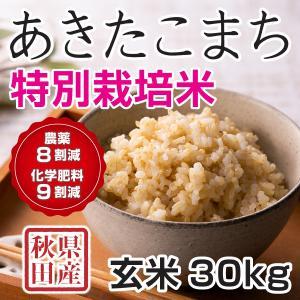 30年産新米 秋田県産 あきたこまち 特別栽培米 玄米 30kg  慣行栽培比 農薬8割減、化学肥料9割減 農家直送|hanatsukafarm
