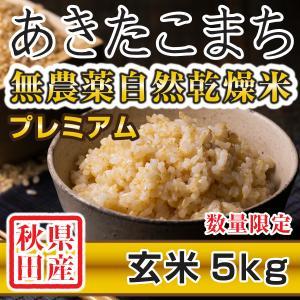 【新米予約】 玄米 令和3年産新米 秋田県産 あきたこまち 無農薬自然乾燥プレミアム 5kg 農家直送|hanatsukafarm