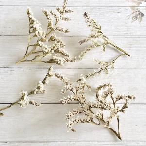 【ドライフラワー】タタリカ ナチュラル 3g 大地農園 ハーバリウム レジン 髪飾り 花材 リース キット