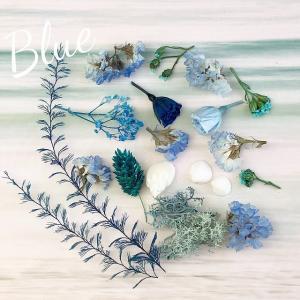 【ドライフラワー・プリザーブドフラワー】マイクロローズMIX ブルー系 ハーバリウム レジン 髪飾り 花材 アレンジ