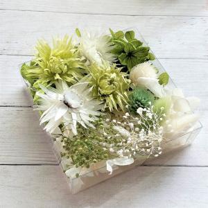 シルバーデイジー 4輪 グリーン系 2色の紫陽花、2色のかすみ草、2色のプリザ千日紅、2色のハニーテ...