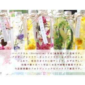 花うるるのハーバリウム (ギフト お祝い お返...の詳細画像2