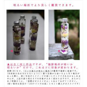 花うるるのハーバリウム (ギフト お祝い お返...の詳細画像5