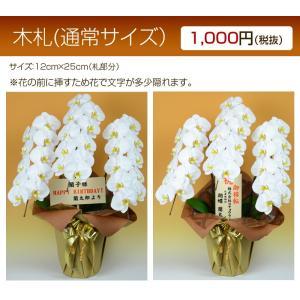 木札:花の下に挿すタイプ【単品販売不可・胡蝶蘭と一緒にご購入ください】|hanayaka
