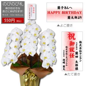 胡蝶蘭専用!のびのびスティック立札orメッセージカード(※胡蝶蘭も一緒に購入してください)|hanayaka
