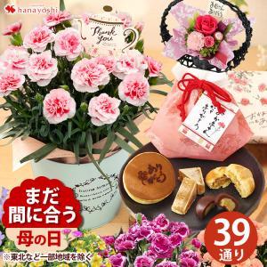 母の日プレゼント花送料無料花鉢など13種から選べる花カーネーションラベンダーベルフラワープリザーブドフラワー選べるスイーツセット母の日ギフト