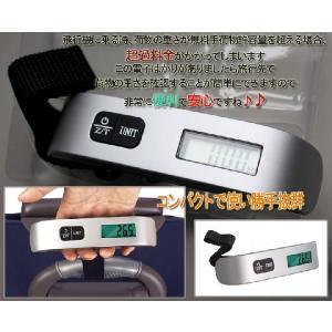 スーツケースと同時購入特典 便利なコンパクト電子はかり|handcase