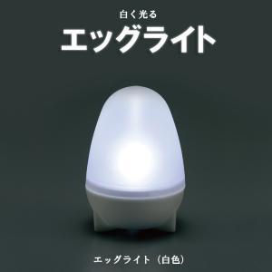エッグライト 白色 LED ライト