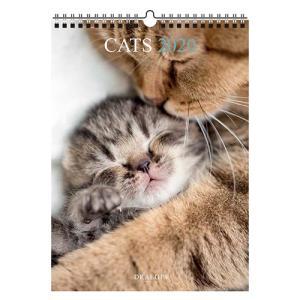 東急ハンズ 【2020年版・壁掛】ドレジャー ポスターカレンダー 猫|hands-net