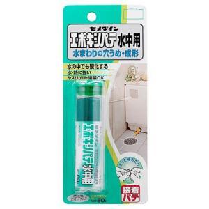 セメダイン エポキシパテ 水中用 HC−119 60g 東急ハンズ