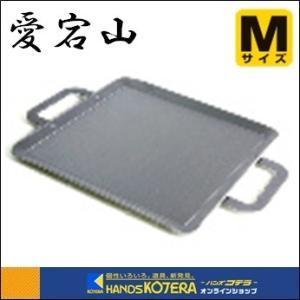 愛宕山 鍛冶屋鉄板 レギュラー 中 340×340mm|handskotera
