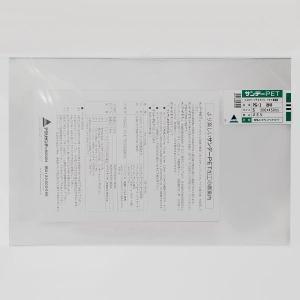 サンデーPET エコロジープラスチック PET樹脂板 PG-1 透明 S 300×450×厚み2mm (161950) 【取寄せ商品】【送料別】【通常配送】|handsman