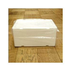 発泡スチロール 小型 クールボックス 保冷ボックス / 発泡スチロール容器 DB-2 約7.5L 2375460 取寄せ商品 送料別 通常配送 / 発泡ケース 箱 保冷|handsman