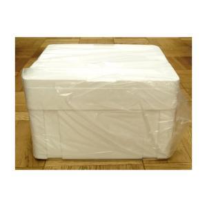 発泡スチロール クーラーボックス 保冷ボックス / 発泡スチロール容器 ASA-H 約28L 2375524 取寄せ商品 送料別 通常配送 / 発泡ケース 箱|handsman