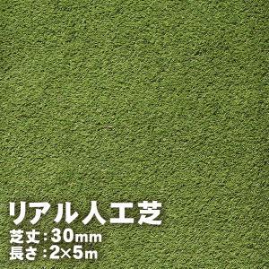 リアル人工芝 30mm 2m×5m|handsman