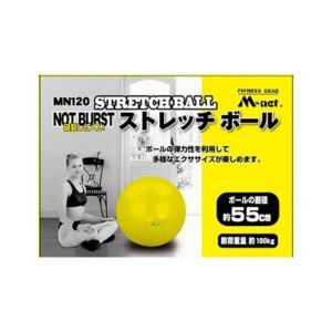 ライテック ストレッチボール 55CM Y MN120 (6881785)  取寄せ商品 送料別 通常配送|handsman