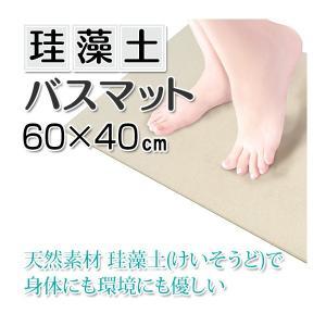 快足 珪藻土バスマット 60×40cm (6900828) 【取寄せ商品】【送料別】【通常配送】|handsman