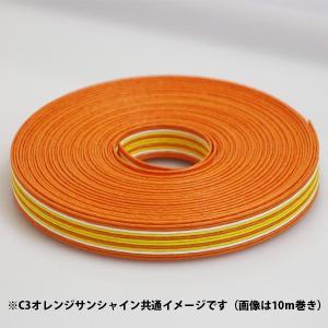 クラフトバンド 紙バンド 手芸用 C3 オレンジサンシャイン 12本取り 約30m (9268103) 送料別 通常配送|handsman