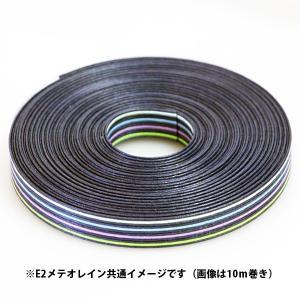 クラフトバンド 紙バンド 手芸用 E2 メテオレイン 12本取り 約30m (9290869) 送料別 通常配送|handsman
