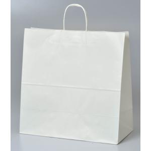 紙袋 Mサイズ:バルーンポット2つ用 handsome-gift