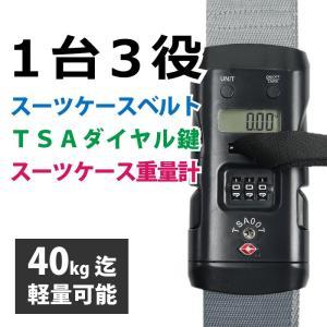 スーツケースベルト TSAロック 3桁ダイヤル重量計付 灰/グレーの画像