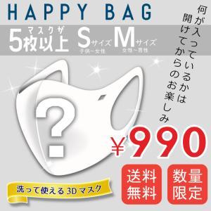 福袋 2021 ハッピーバック happybag2021 マスク 5パック 送料無料|hangaa