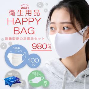 ハッピーバッグ 2021 マスク 除菌シート 980円|hangaa