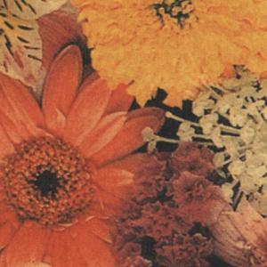 花柄ラッピング包装紙(ヴィクトリアカラー)