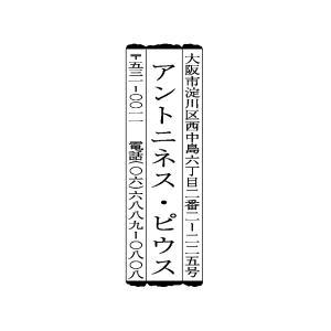 個人印鑑 風雅印 ゴム印 タイプJ|hanko-king