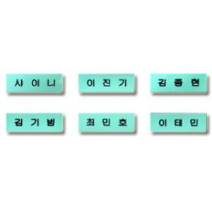【送料無料・速達・代引不可】 SHINee (シャイニー) グッズ - ハングル ネームプレート (Name Plate) 名札 なふだ|hanryubank