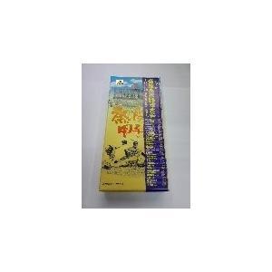 甲子園チーズ蒸しケーキ 10個入り|hanshinkachiya