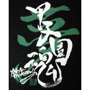 甲子園魂 Tシャツ|hanshinkachiya|02