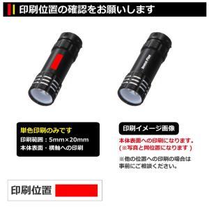 名入れ印刷料金無料 3灯式LEDライト(キーリ...の詳細画像1