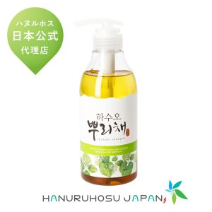 ハヌルホス 公式 クールシャンプー 500ml かゆみ ふけ 頭皮の悩みに 韓国コスメ  skylake 国内発送|hanuruhosu