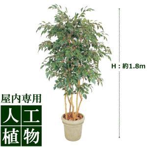 【人工植物】グリーンデコ ベンジャミン 立木 5本立 1.8m|hanwa-ex