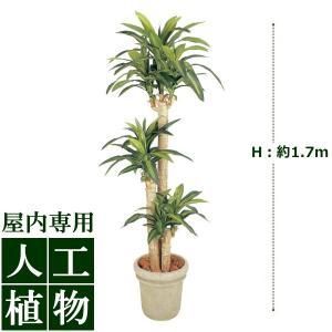 【人工植物】グリーンデコ ドラセナ 幸福の木 1.7m|hanwa-ex