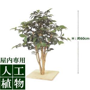 【人工植物】グリーンデコ ミニサザンカ 板付 60cm|hanwa-ex