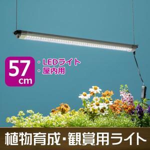 植物育成・観賞用ライト グローライト57cm 基本型 / 植物育成ライト 植物観賞ライト LEDライト 屋内用|hanwa-ex
