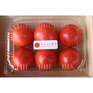 遠州浜松都田marutakaトマト730g×2パック|hapifullstore