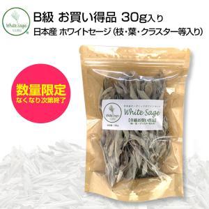 [無農薬・限定数販売]日本産 浄化用 ホワイトセージ B級お買い得品 葉・枝・クラスター等入り 30g クリックポスト パワーストーン 浄化 お香|hapima
