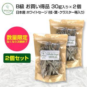 [無農薬・限定数販売]日本産 浄化用 ホワイトセージ B級お買い得品 2個セット 葉・枝・クラスター等入り 30g クリックポスト パワーストーン 浄化 お香|hapima