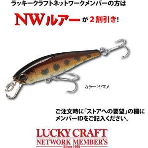 ラッキークラフト NW-Amigo 04 / ビーフリーズ48|hapinetangler|03