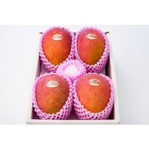 沖縄マンゴー【贈答用】【優】 2kg 4〜6玉 夏ギフト  沖縄県産 アップルマンゴー   マンゴ− フルーツ 産地直送 ご注文日から7日以内に発送致します。 happ-mama