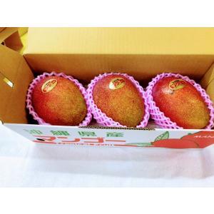 沖縄マンゴ−【ご自宅用】訳アリ 沖縄県産 アップルマンゴ− 1kg  2〜3玉 沖縄 マンゴ― フル−ツ 産地直送ご注文日から7日以内に発送致します。 happ-mama