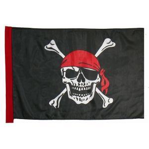 〔コスプレ〕 〔ハロウィン〕 Pirate Flag(海賊の旗) 4560320843528