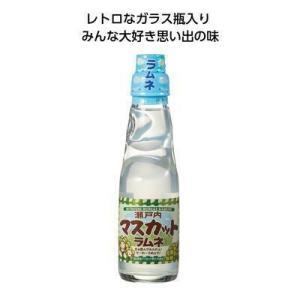 瓶ラムネ マスカット味 ギフト 粗品 記念品 景品 プレゼント|happinesnet-stora