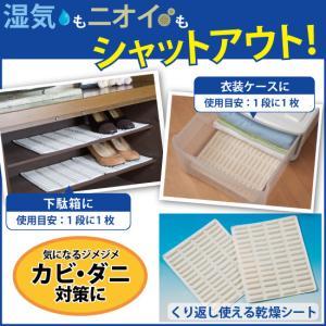 乾燥剤 ニオイ除去 湿気乾燥 小スペース用 乾燥シート 梅雨対策 2枚組 C-00001 happinesnet-stora