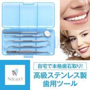 歯石取り 器具 スケーラー 自分で 歯石 歯 ヤニ取り しこう取り 一般医療機器 5点セット Nic...