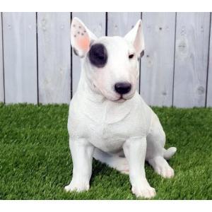 アニマルオブジェ:ブルテリア(親)犬 置物 インテリア 動物 オブジェ 子犬|happy-goods